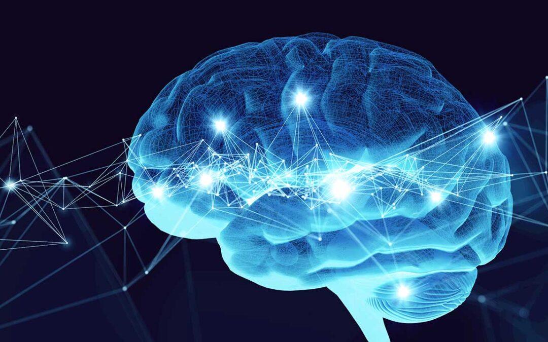 Neurociberseguridad para no ser víctima de los ciberdelincuentes